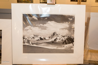 SAA Images Auction-jlb-04-07-15-2428w