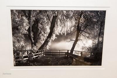 SAA Images Auction-jlb-04-07-15-2391w