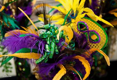 SAA Mardi Gras-jlb-02-08-14-5390w