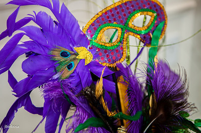 SAA Mardi Gras-jlb-02-08-14-5391w