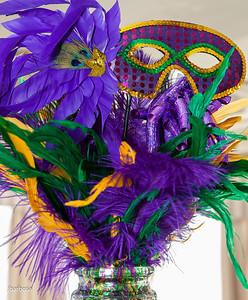 SAA Mardi Gras-jlb-02-08-14-5379w