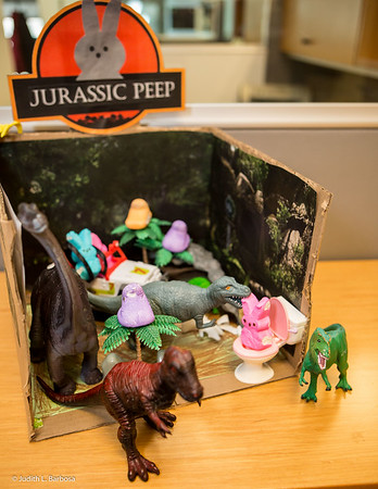 Yale Peep Show-jlb-03-24-16-2786w