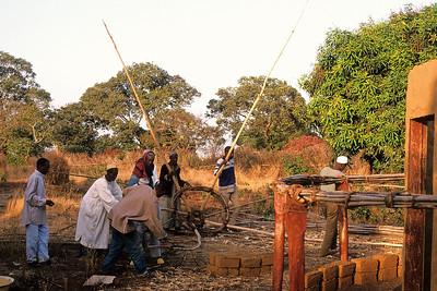 Guinea Slide Scans 1 011