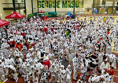 The largest gathering of people dressed as cows was 470 participants, at an event organized by Chick-fil-A (USA) at George Mason University, Fairfax, Virginia, USA, on 2 July 2013.  All rights reserved Guinness World Records