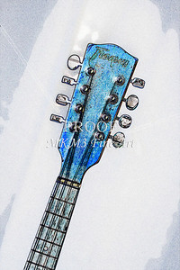 207 .1845 Framus Mandolin Watercolor