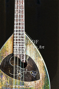 102 .1845 Framus Mandolin Drawing