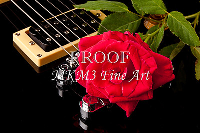 Red Rose on Guitar Wall Art 4101.10