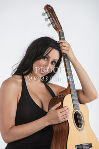 125.1855 Guitar Model Color Art Photograph