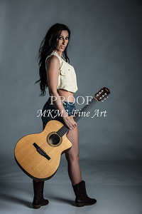 120.1855 Guitar Model Color Art Photograph