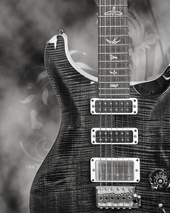 Paul Reed Smith Guitar in Black and White 206.2110
