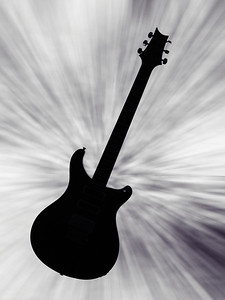 Paul Reed Smith Guitar in Black and White 209.2110