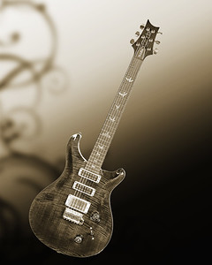 Paul Reed Smith Guitar in Black and White 203.2110