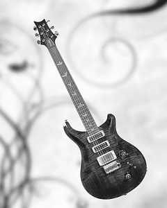 Paul Reed Smith Guitar in Black and White 201.2110