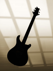 Paul Reed Smith Guitar in Black and White 210.2110