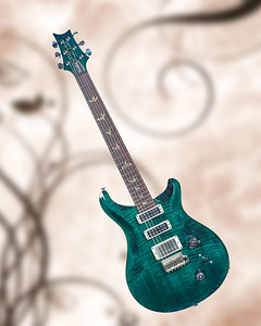 Paul Reed Smith Guitar in Color 101.2110
