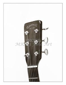 Takamine Guitar 847.2109