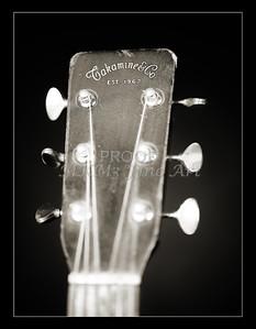 Takamine Guitar 839.2109