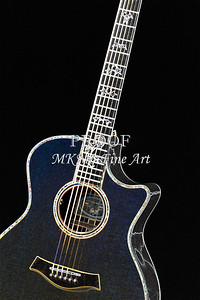 410.1837 Taylor 914C Guitar Drawing
