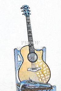300.1837 Taylor 914C Guitar Watercolor