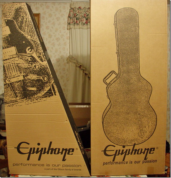 Shipping Cartons for 2014 Epiphone ES-335 Pro plus case
