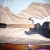 1965 Silvertone 1448 by Danelectro