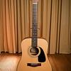 Fender 12-String