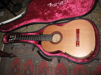 Guitars 2010 06 05 G10