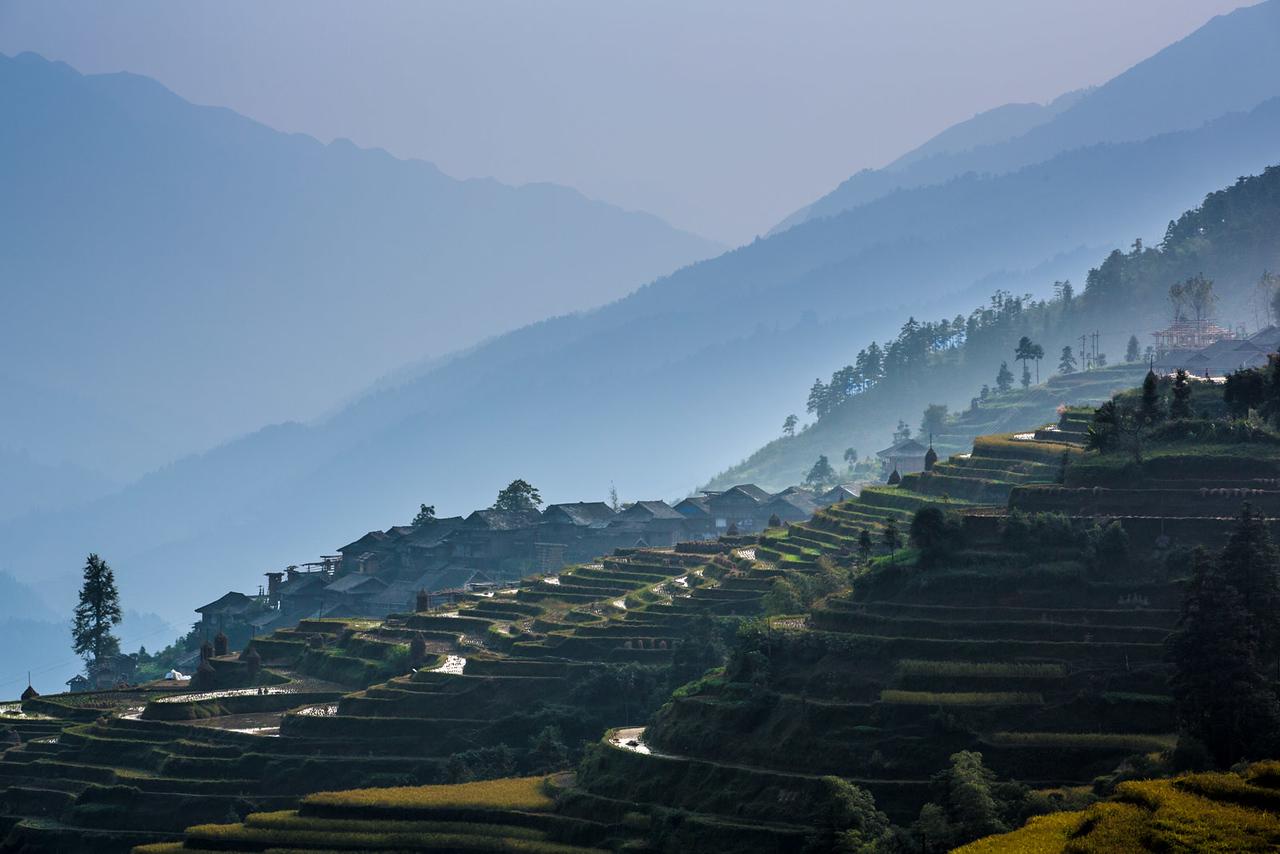 Rice terraces. Dangniu, Chongjiang.