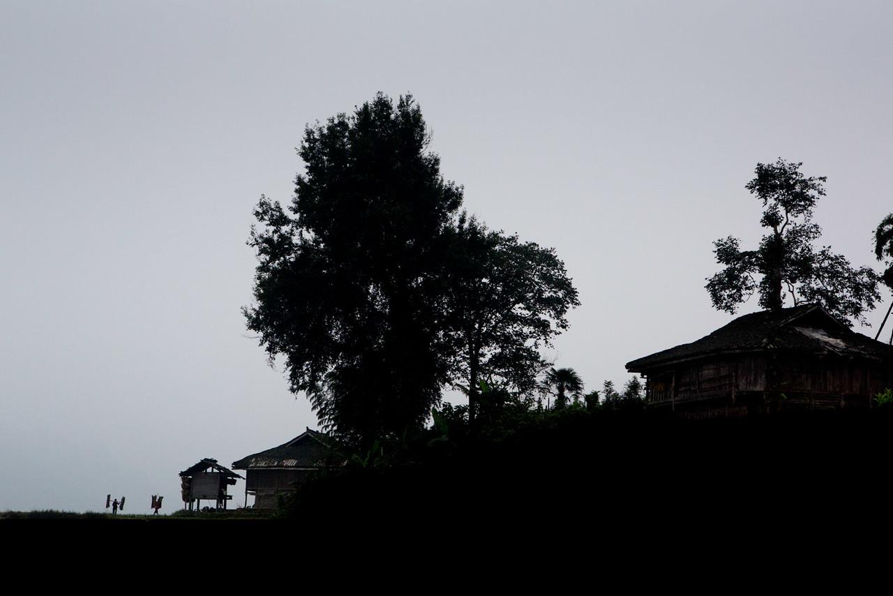 Carrying firewood back to the village. Dangniu, Chongjiang.