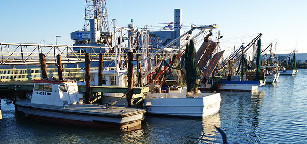 Shrimpers Docked at 20th Street Pier