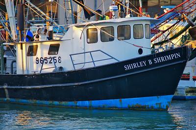 Shirley B Shrimpin
