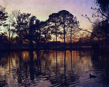 Audubon Lagoon