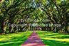 GulfCoast012-Oak Alley Plantation