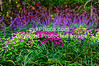 GulfCoast032-Flower Garden
