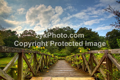 GulfCoast030-Flowered Bridge