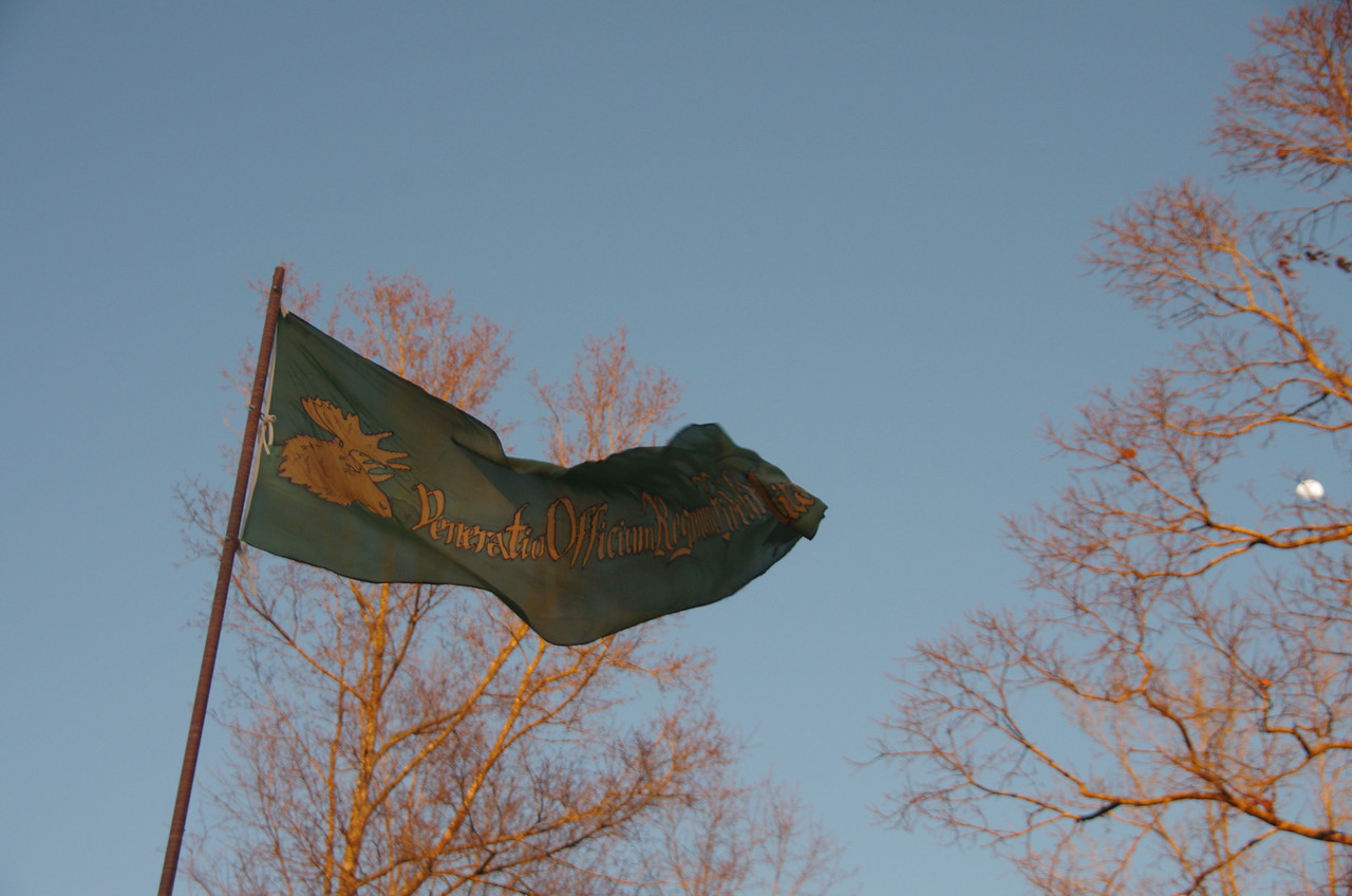 Forgal banner