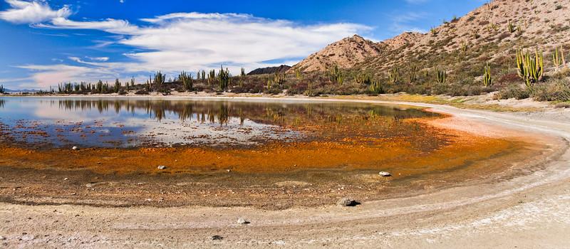 A cactus-fringed lagoon on Isla San Lorenzo in the Gulf of California