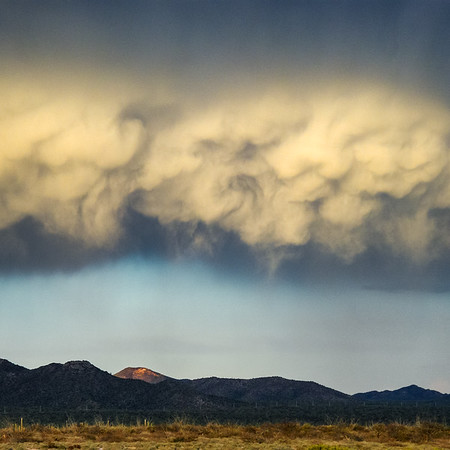 Mamatus clouds build overhead as a storm brews in the Sonoran Desert.