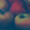 Shenandoah Apples