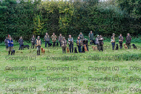 DVWGC Open 2 day Retriever Trial 14 & 15 Oct 2019