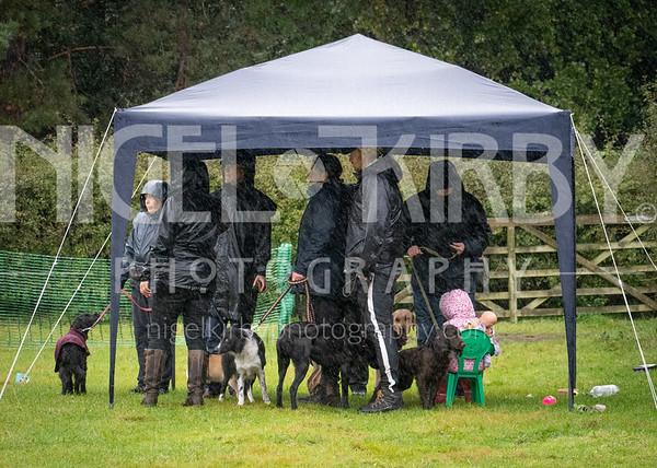 Cheshire K9 Training - Agility Camp - Sept 20