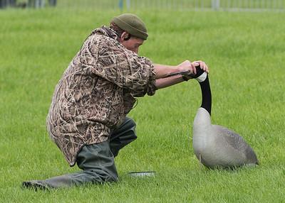 Chris Green - Wild Fowling - DSC_9247