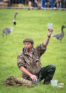 Chris Green - Wild Fowling - DSC_0540