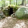 Gungywamp Site 1.