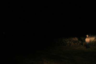 12g night shots