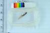 DSC_6404