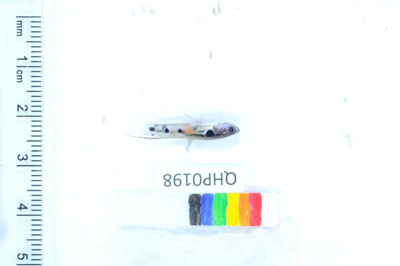 119_DSC_2021