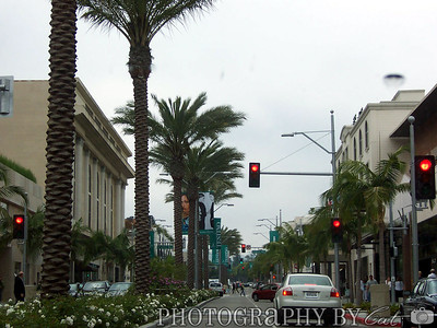 Driving down Rodeo Drive.