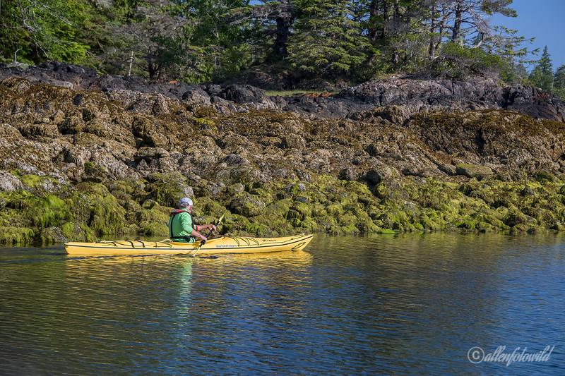 Sea kayaking Burnaby Narrows at low tide, Gwaii Haanas, Haida Gwaii, BC