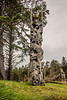 Mortuary pole, Ninstints